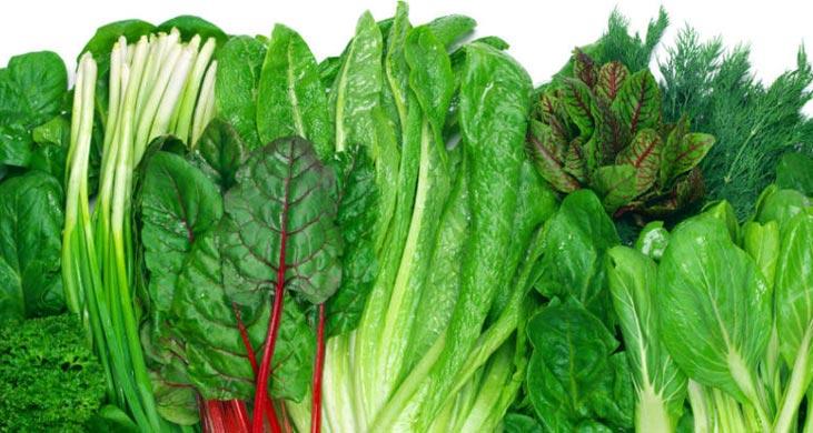 vegatable/ سبزی های مناسب کم خونی